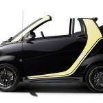 smart-fortwo-cabrio-brabus-moscot-edition-26