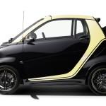 smart-fortwo-cabrio-brabus-moscot-edition-27